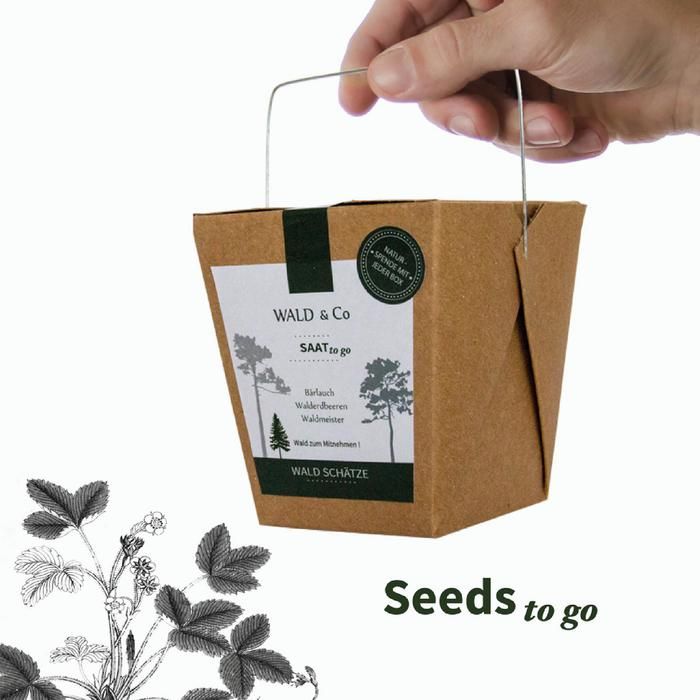 Wild Flower Seed Collection